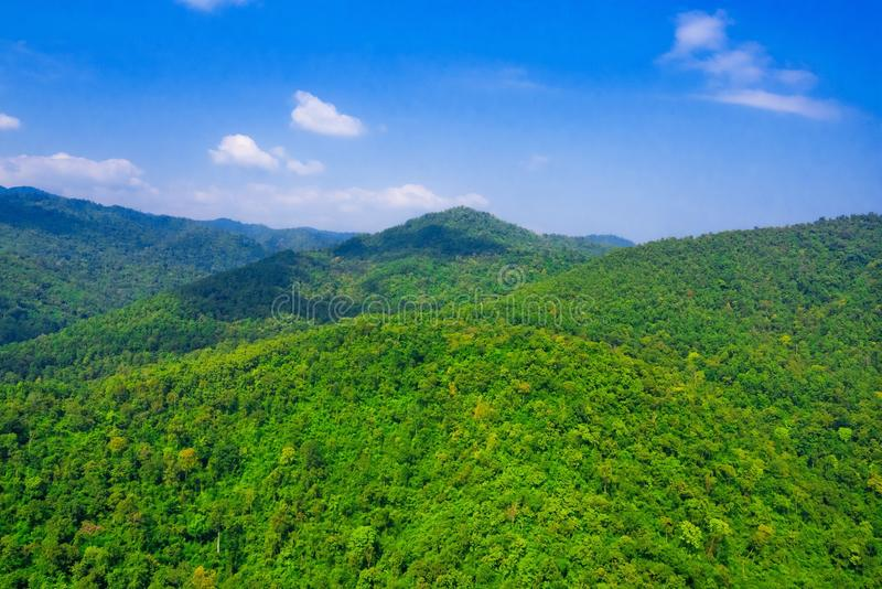 Aerial view of forest. Aerial view of the forest stock images