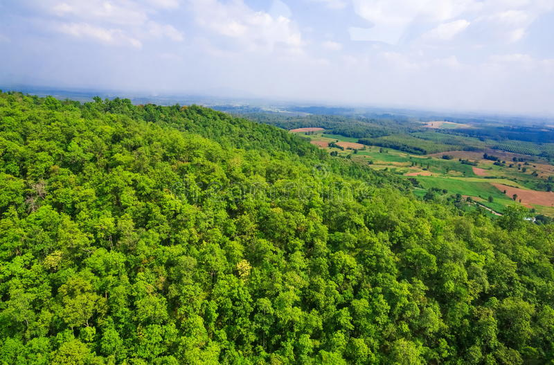 Aerial view of forest. Aerial view of the forest royalty free stock images