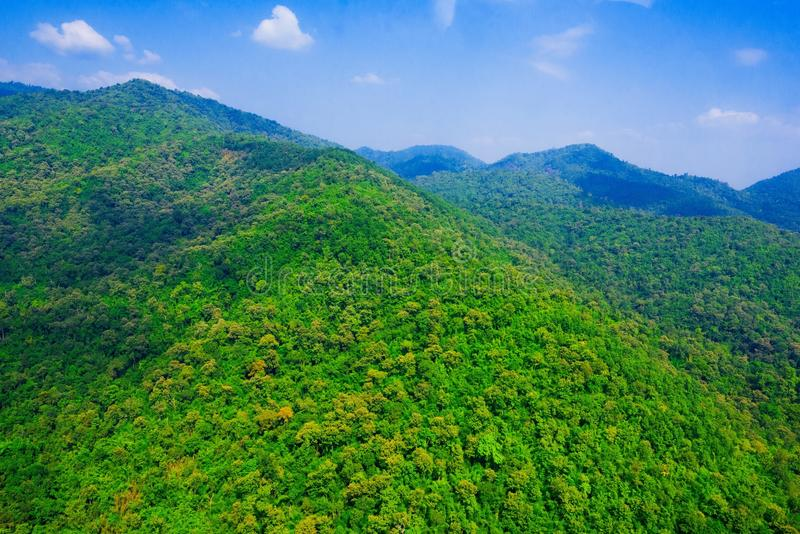 Aerial view of forest. Aerial view of the forest royalty free stock photo