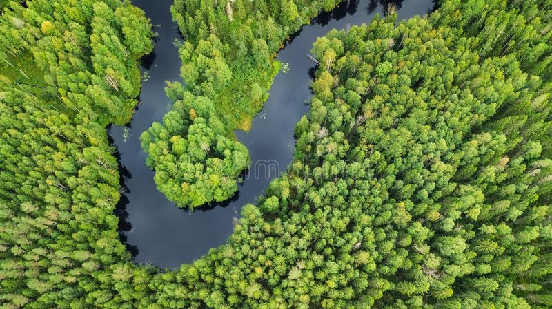 Aerial view on the forest and river royalty free stock photos