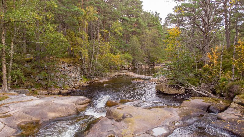 An aerial view of a forest rocky mountain stream with trees along the bank stock image