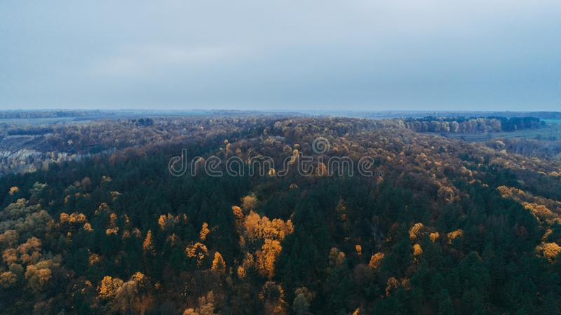 Aerial view of the forest. Yellow trees. Aerial view of the forest. Yellow and green trees. Autumn. Sky stock image