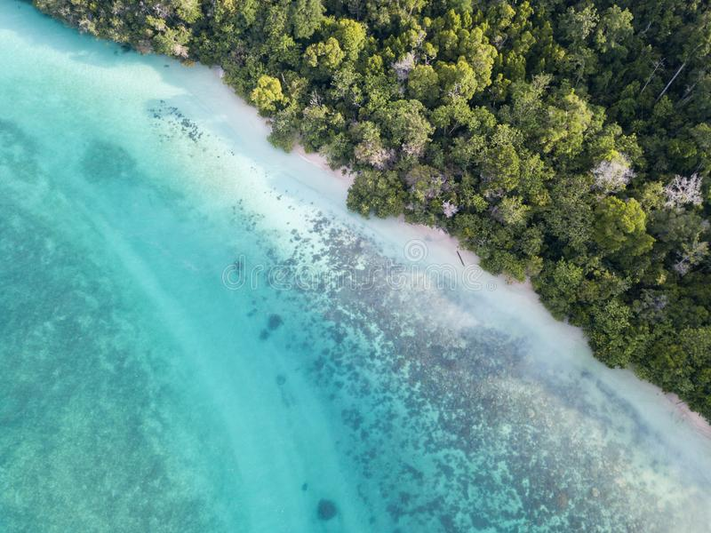Aerial View of Fringing Reef, Beach, and Rainforest in Raja Ampat stock photography