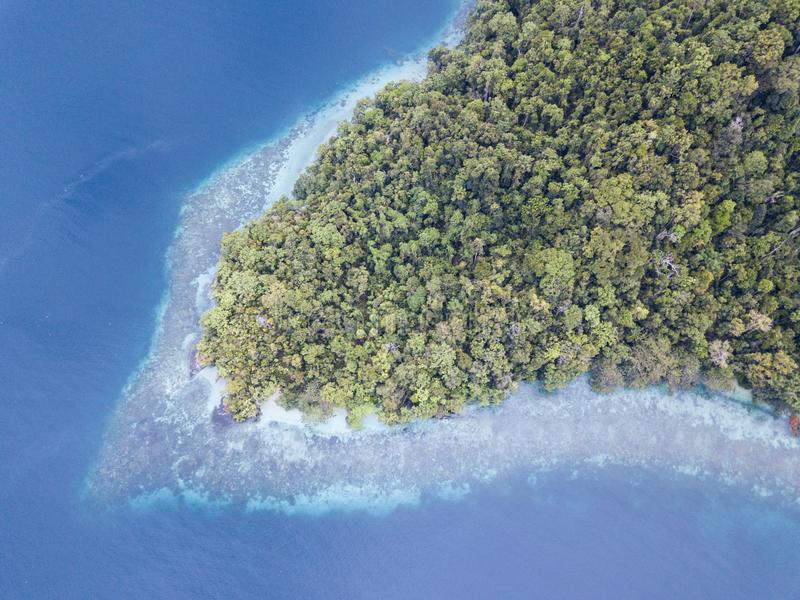 Aerial View of Fringing Reef and Rainforest in Raja Ampat stock photo