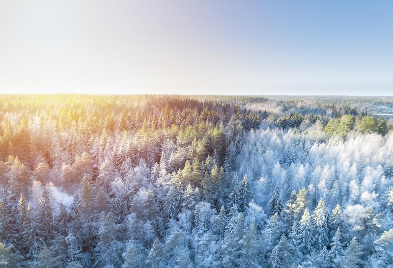 Aerial view of a gold sunset over winter snow covered forest. Drone view of a winter landscape. Christmas nature. royalty free stock images