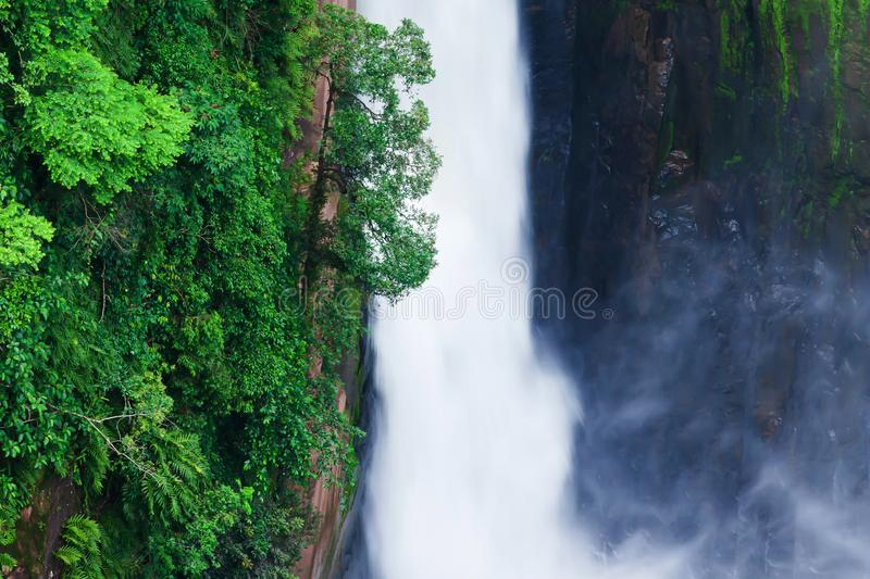 Aerial view of the grand waterfall in tropical ravine stock images