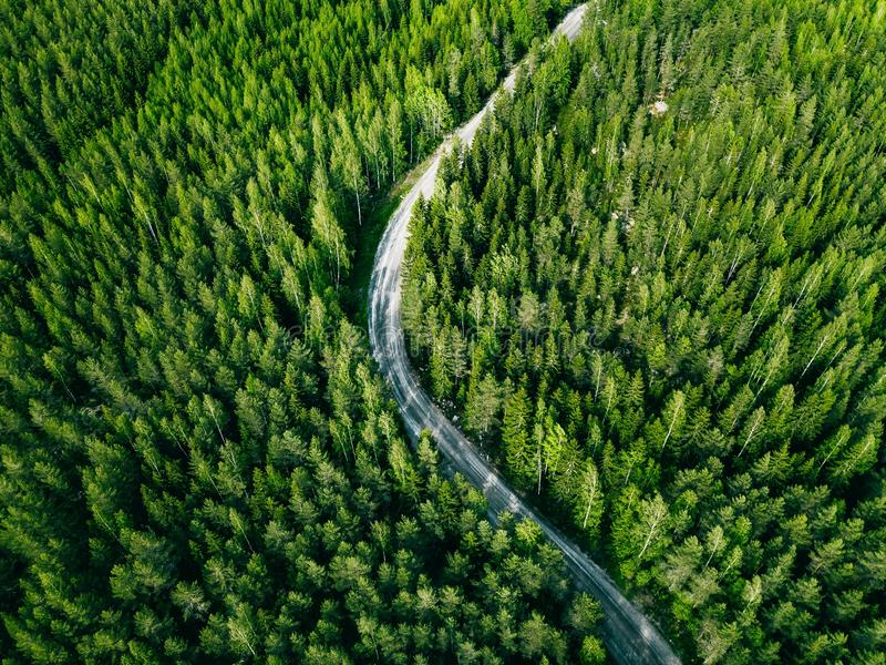 Aerial view of green forest road. Curved road from above royalty free stock images