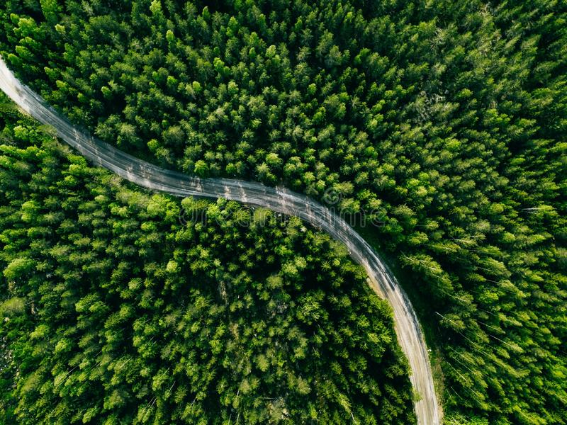 Aerial view of green forest road. Curved road from above. Aerial view of green summer forest road. Curved road from above stock photo