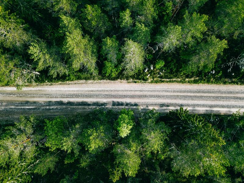 Aerial view of green summer forest road. Drone photo from above stock photography