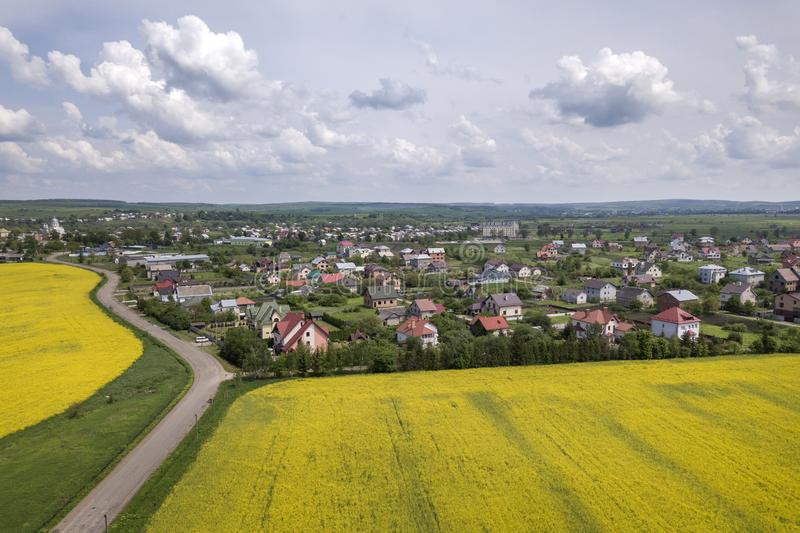 Aerial view of ground road in green fields with blooming rapeseed plants, suburb houses on horizon and blue sky copy space. Background. Drone photography royalty free stock photo