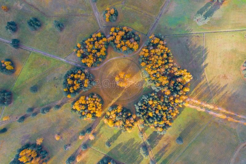 Aerial view of the a group trees planted in a circle in an autumn park with hiking trails, sunlight and forest shadows.  stock image