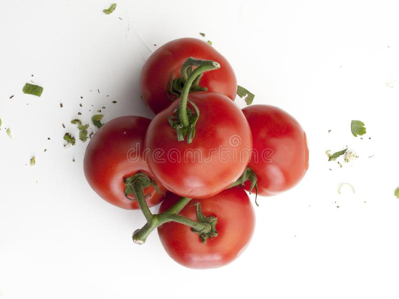 Aerial view of a handful of tomatoes on branch royalty free stock image