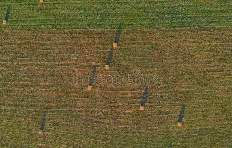 Aerial view of the hay bales in the countryside, Croatia stock photo