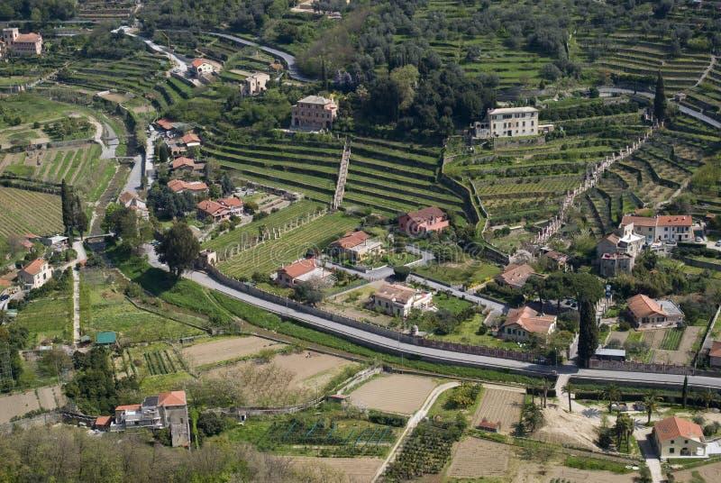 Aerial view of hillside