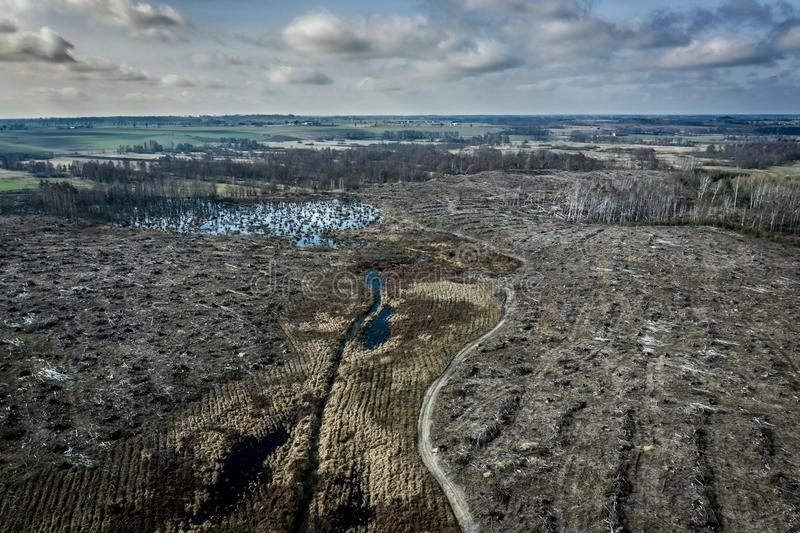 Aerial view of horrible deforestation, destroyed forest for harvesting. Europe royalty free stock image