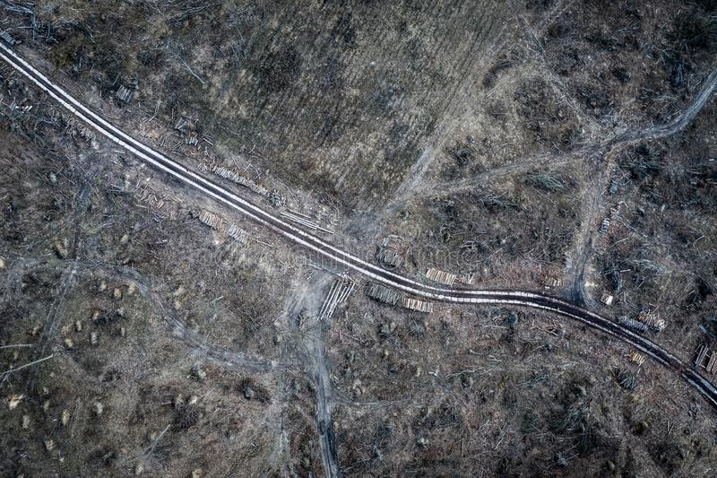 Aerial view of horrible deforestation. harvesting a forest. Europe stock photography