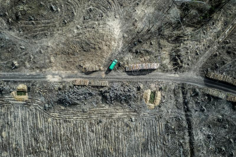 Aerial view of horrible deforestation. harvesting a forest, Poland. Europe royalty free stock image