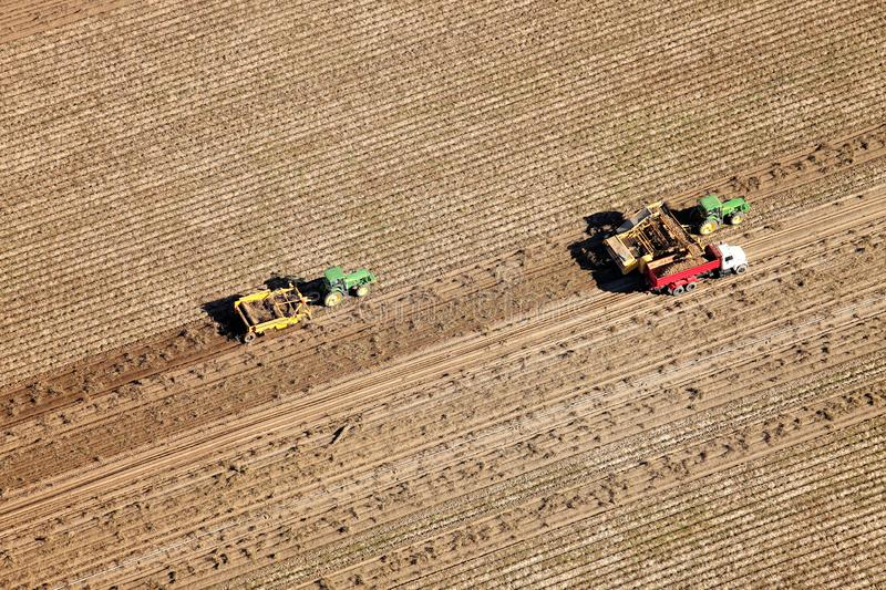 Aerial view of an Idaho potato harvest. royalty free stock photo