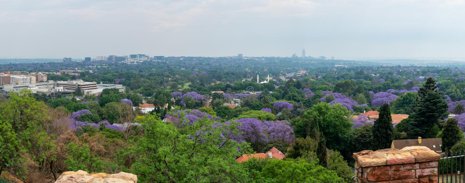 Aerial view of Johannesburg with green parks and Jacaranda trees, South Africa royalty free stock images