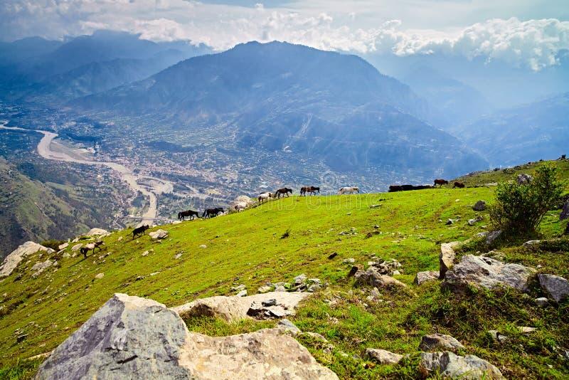 Aerial view of Kullu valley. Naggar, North India. Aerial view of Kullu valley. Naggar, Himachal Pradesh. North India stock images