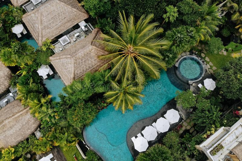 Aerial view of luxury hotel with straw roof villas and swimming pools in tropical jungle and palm trees. Luxurious villa. Pavilion in forest, Ubud, Bali royalty free stock photo