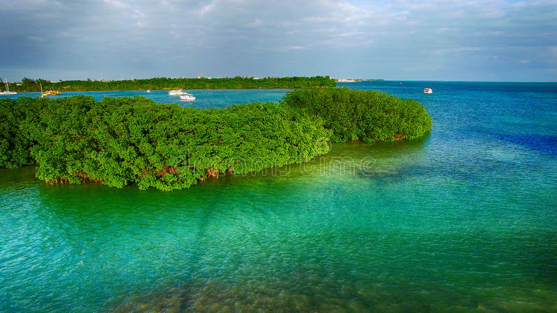Aerial view of Mangroves and Ocean, Key West - Florida - USA royalty free stock images