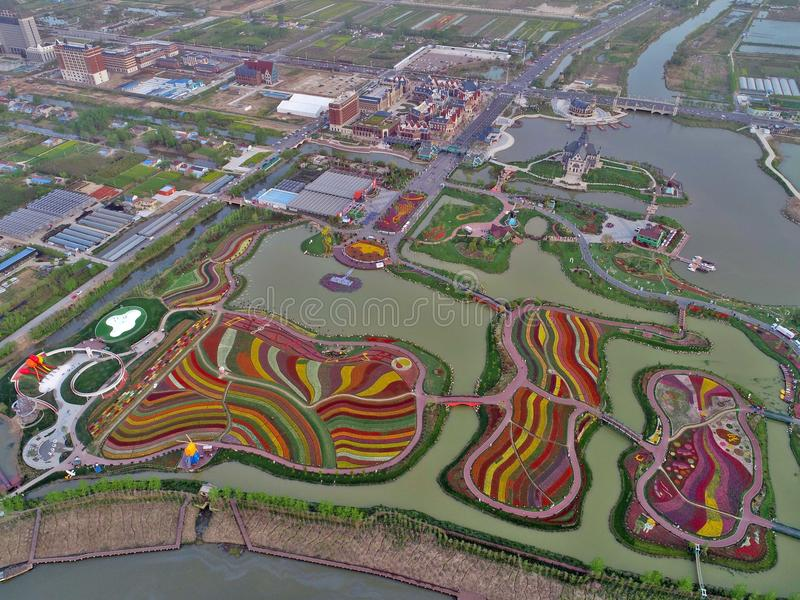 Jiangsu yancheng: the aerial photography of 30 million tulips in the Netherlands is intoxicating. Aerial view of more than 30 million tulips in full blossom at stock photography