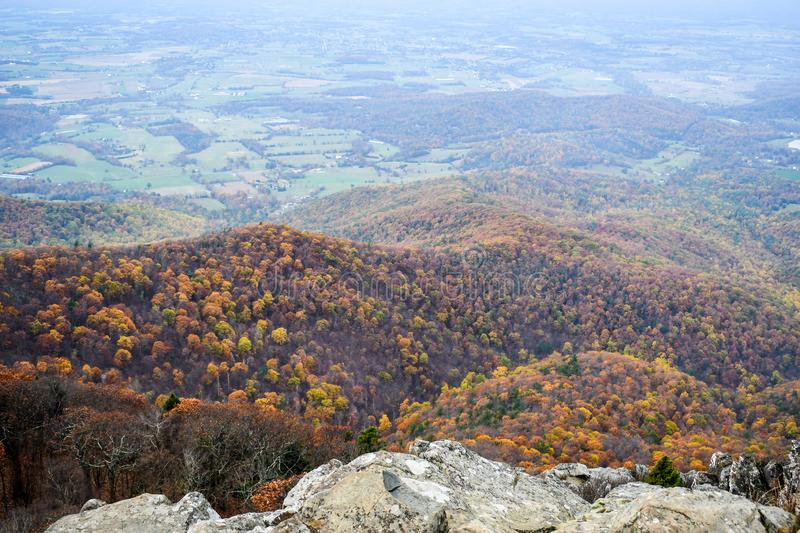 Aerial view of mountain forests in bright autumn colors stock photography