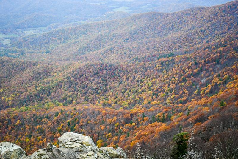 Aerial view of mountain forests in bright autumn colors royalty free stock photo