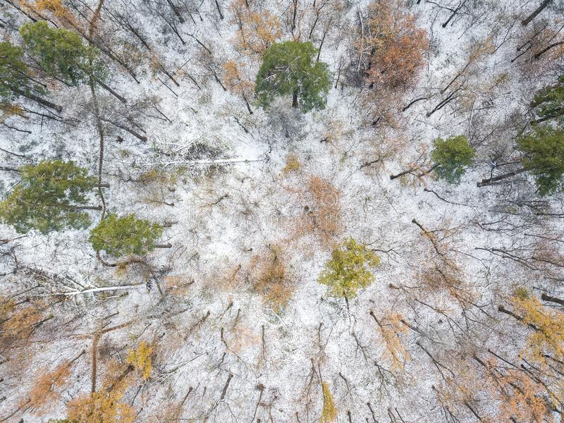 Aerial view on the mountain landscape in winter season. The aerial view on the mountain landscape in winter season stock image