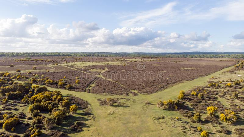 Aerial view of the New Forest National Park with heathland under a majestic blue sky and white clouds royalty free stock images
