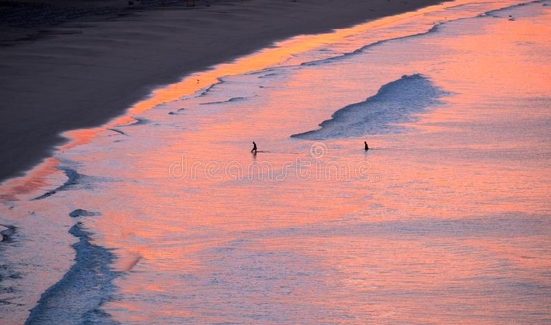 Aerial view on the ocean on the sunrise on Fuerteventura, Spain. Aerial view on the ocean on the sunrise. Water is coloured with pink light. Two unknown persons stock images
