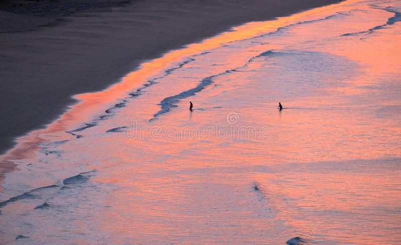 Aerial view on the ocean on the sunrise on Fuerteventura, Spain. Aerial view on the ocean on the sunrise. Water is coloured with pink light. Two unknown persons royalty free stock images