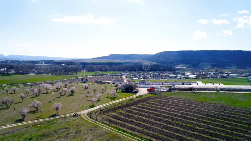 Aerial view over agricultural fields with blooming trees. Shot. Top view of the flowering fields of cherry trees stock photo