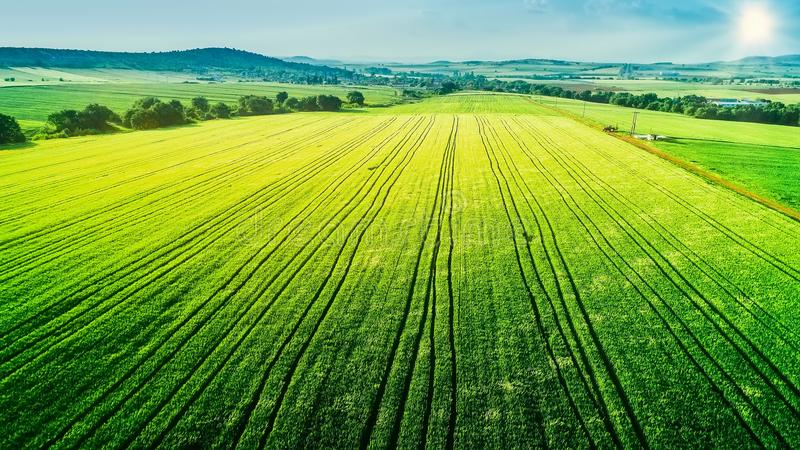 Aerial view over the agricultural fields stock photography