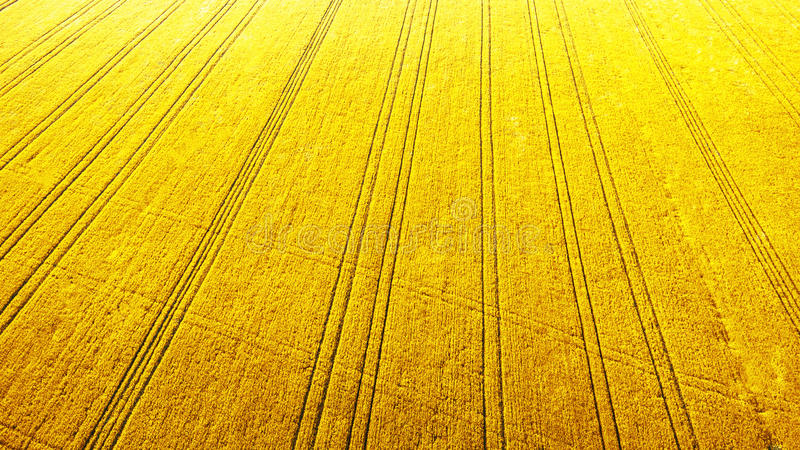 Aerial view over the agricultural fields. Spring concept royalty free stock photo