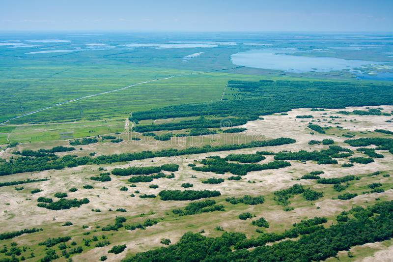 Aerial View Over Letea Forest in the Danube Delta, Romania royalty free stock photo