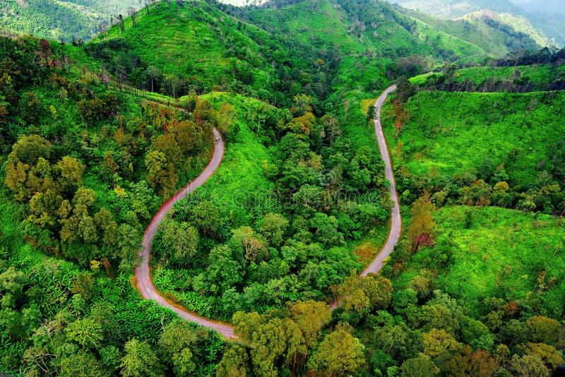 Aerial view over mountain road going through forest. Landscape royalty free stock images