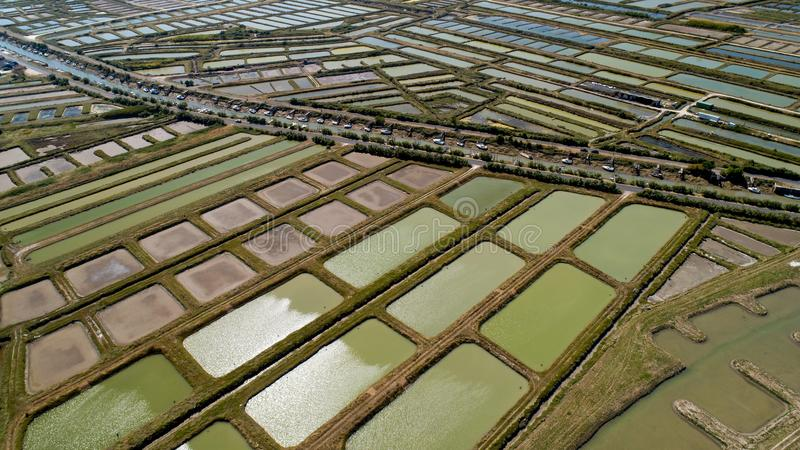 Aerial view of oysters farms in Marennes, Charente Maritime stock photo