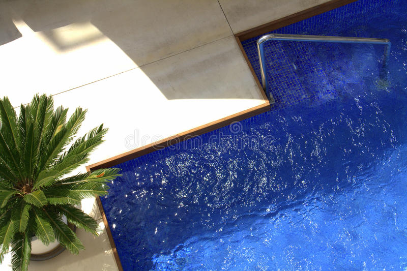 Aerial View Of Palm And Pool Royalty Free Stock Photo