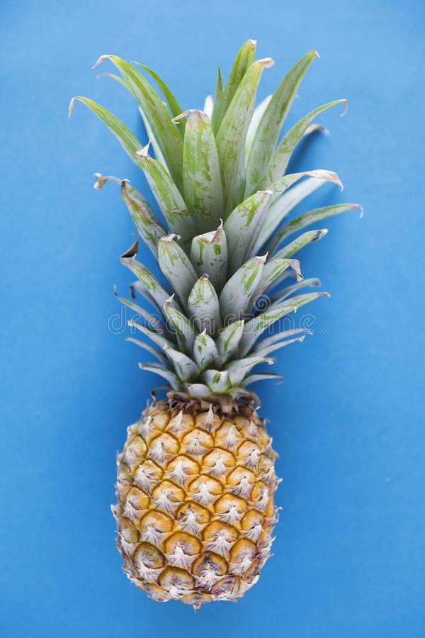 Aerial view of pineapple blue background royalty free stock image