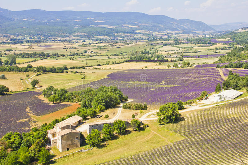 Download Aerial View Of Provence And The Lavender Fields Stock Photo - Image of blooming, europe: 25915986