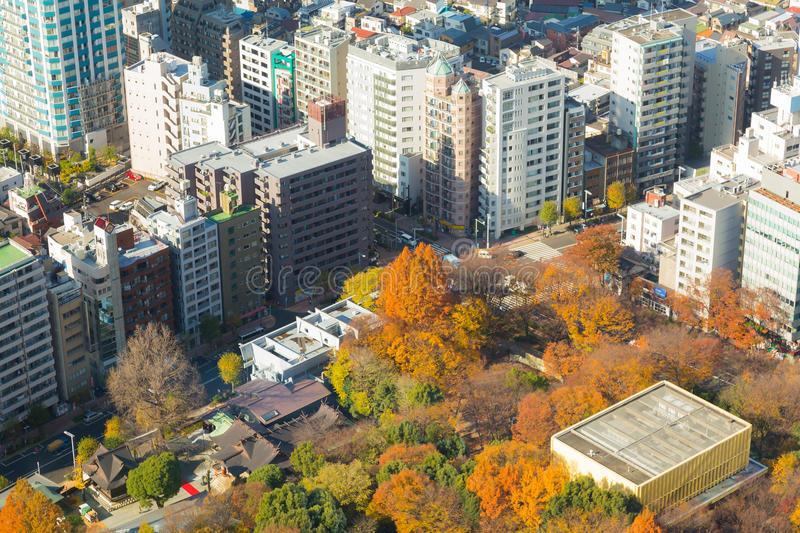 Aerial view of public park in city downtown during late autumn season royalty free stock image
