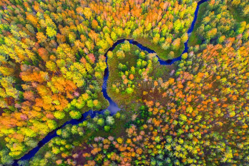 Aerial view of river and autumn forest. This is Aerial view of river and autumn forest stock image