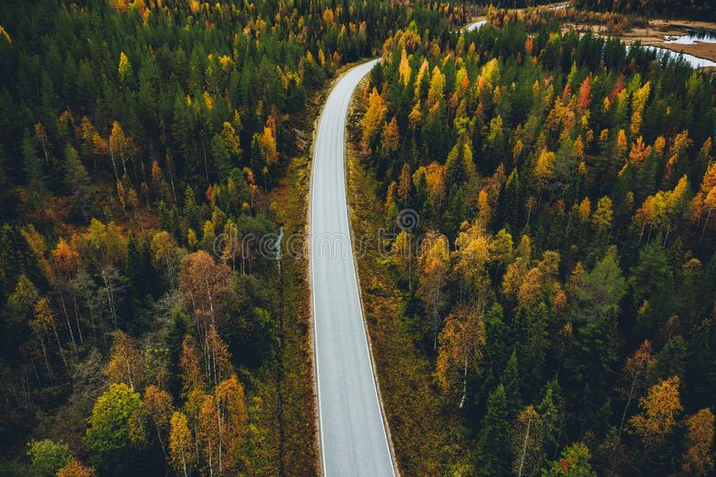 Aerial view of road in beautiful autumn forest in Finland. Aerial view of fall landscape, road in beautiful autumn forest in Finland royalty free stock images