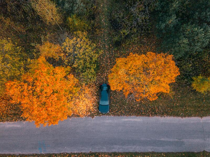 Aerial view of road with blurred car in autumn forest at sunset. Amazing landscape with rural road, trees with red and. Orange leaves in day. Highway through stock photography
