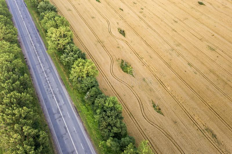 Aerial view of a road between yellow wheat fields and green trees.  royalty free stock image