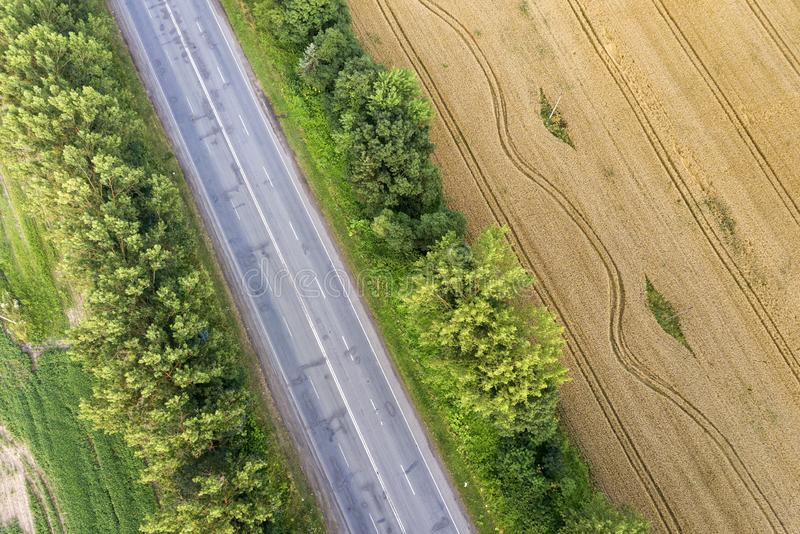 Aerial view of a road between yellow wheat fields and green trees.  royalty free stock photo