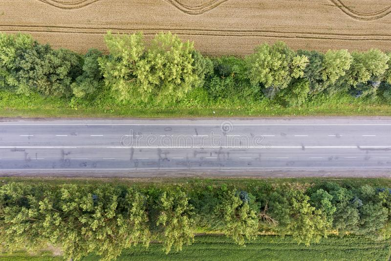 Aerial view of a road between yellow wheat fields and green trees.  stock photo