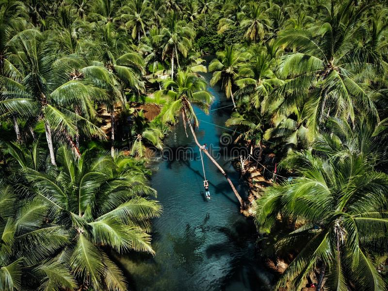 Aerial View of Rope Swing in Siargao Island - The Philippines royalty free stock image